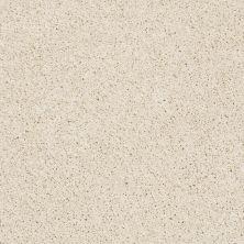 Shaw Floors Nfa/Apg Elegant Twist Fine China 00104_NA306
