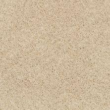 Shaw Floors Nfa/Apg Elegant Twist Chenille Soft 00110_NA306