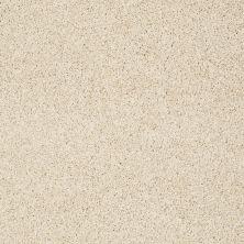 Shaw Floors Nfa/Apg Elegant Twist Parchment 00111_NA306