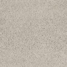 Shaw Floors Nfa/Apg Elegant Twist Putty 00125_NA306