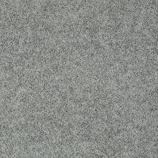 Shaw Floors Nfa/Apg Elegant Twist Bar Harbor 00531_NA306
