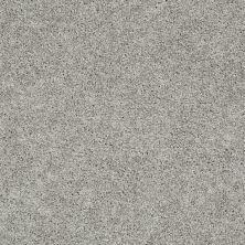 Shaw Floors Nfa/Apg Elegant Twist Elephant Gray 00534_NA306