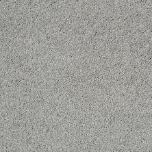 Shaw Floors Nfa/Apg Elegant Twist Fossil 00541_NA306