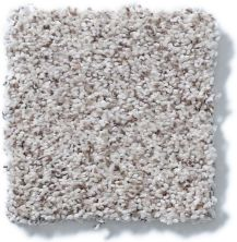 Shaw Floors Nfa/Apg Detailed Artistry II Snowcap 00179_NA329