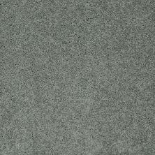 Shaw Floors Nfa/Apg Detailed Elegance II Silver Sage 00350_NA333