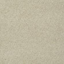 Shaw Floors Nfa/Apg Detailed Elegance III Candlewick Glow 00101_NA334