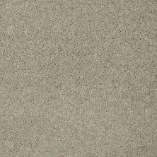 Shaw Floors Nfa/Apg Detailed Elegance III Cityscape 00109_NA334