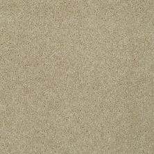 Shaw Floors Nfa/Apg Detailed Elegance III Beach Walk 00126_NA334
