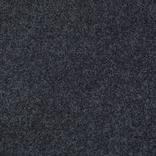 Shaw Floors Nfa/Apg Detailed Elegance III Indigo 00451_NA334