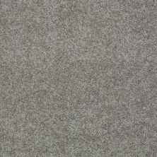Shaw Floors Nfa/Apg Detailed Elegance III Fog 00753_NA334