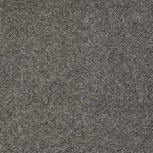 Shaw Floors Nfa/Apg Detailed Elegance III Graphite 00754_NA334