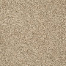 Shaw Floors Nfa/Apg Detailed Tonal Taffeta 00107_NA340
