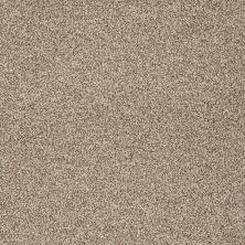 Shaw Floors Nfa/Apg Detailed Tonal Clay Stone 00108_NA340