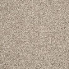 Shaw Floors Nfa/Apg Detailed Tonal Latté 00152_NA340