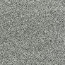 Shaw Floors Nfa/Apg Detailed Tonal Silver Sage 00350_NA340