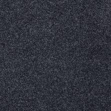 Shaw Floors Nfa/Apg Detailed Tonal Indigo 00451_NA340