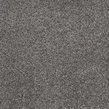 Shaw Floors Nfa/Apg Detailed Tonal Charcoal 00551_NA340