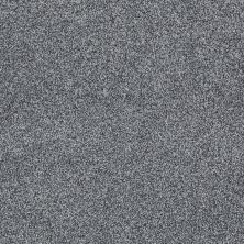 Shaw Floors Nfa/Apg Detailed Tonal Atmosphere 00552_NA340