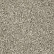 Shaw Floors Nfa/Apg Detailed Tonal Smooth Slate 00704_NA340