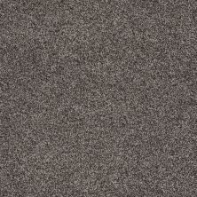 Shaw Floors Nfa/Apg Detailed Tonal Rustic Elegance 00752_NA340