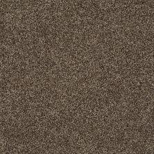 Shaw Floors Nfa/Apg Detailed Tonal Weathered Wood 00759_NA340