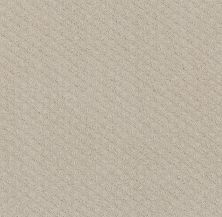 Shaw Floors Final Thought Washed Linen 00103_NA451