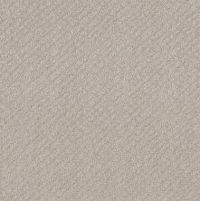 Shaw Floors Mod Beauty Split Sediment 00104_NA455
