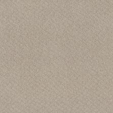 Shaw Floors Mod Beauty Fossil Path 00108_NA455
