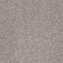 Shaw Floors Always On Time Arrowhead 00792_NA456