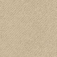 Shaw Floors Nfa Wishful Thinking Espresso 00192_NA457