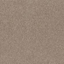 Shaw Floors Calm Embrace I Beige Bisque 00110_NA458