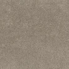 Shaw Floors Calm Embrace II Desert View 00701_NA459