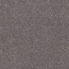 Shaw Floors Simple Charm I Silver Lining 00510_NA460
