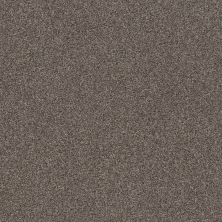 Shaw Floors Simple Charm I Antelope 00714_NA460