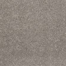 Shaw Floors Simple Charm II Washed Linen 00113_NA461