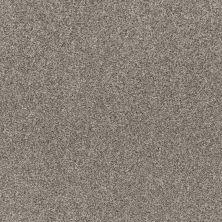 Shaw Floors Simple Charm II Kidskin 00119_NA461
