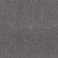 Shaw Floors Simple Charm II Silver Lining 00510_NA461