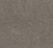 Shaw Floors Simple Charm II Desert View 00711_NA461