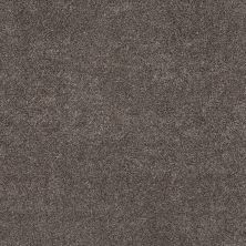 Shaw Floors Simple Charm II Antelope 00714_NA461