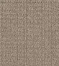 Shaw Floors Stay Tuned French Linen 00101_NA468