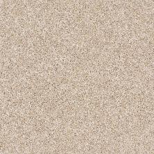 Shaw Floors My Way I Sand Castle 00100_NA469