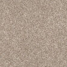 Shaw Floors My Way I Neutral Ground 00101_NA469