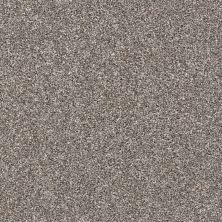 Shaw Floors My Way I Tree House 00700_NA469
