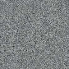 Shaw Floors Out Of Reach I Grey Fox 00504_NA472