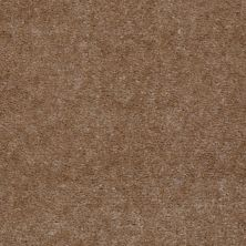 Shaw Floors Northeast Local Stock Program Freedom Tudor Brown 00701_NE137
