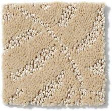 Anderson Tuftex Pattern Destination Col Bradenton Sand Swirl 00173_PN135