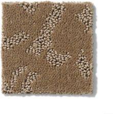 Anderson Tuftex Pattern Destination Col Laurel Springs Pecanwood 00775_PN145