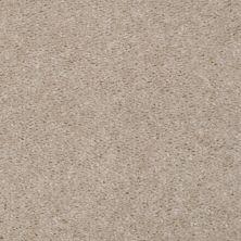 Shaw Floors Ever Again Nylon Eco Elegance Venetian Tile 00106_PS501