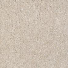 Shaw Floors Ever Again Nylon Eco Elegance Natural Ecru 00115_PS501