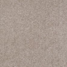 Shaw Floors Ever Again Nylon Eco Elegance Desert Breeze 00116_PS501